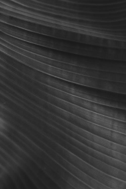 Základová fotografie zdarma na téma abstraktní, architektonický, černobílá, design