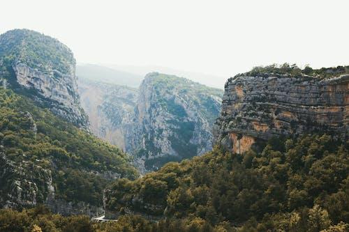 Gratis arkivbilde med årstid, busk, canyon