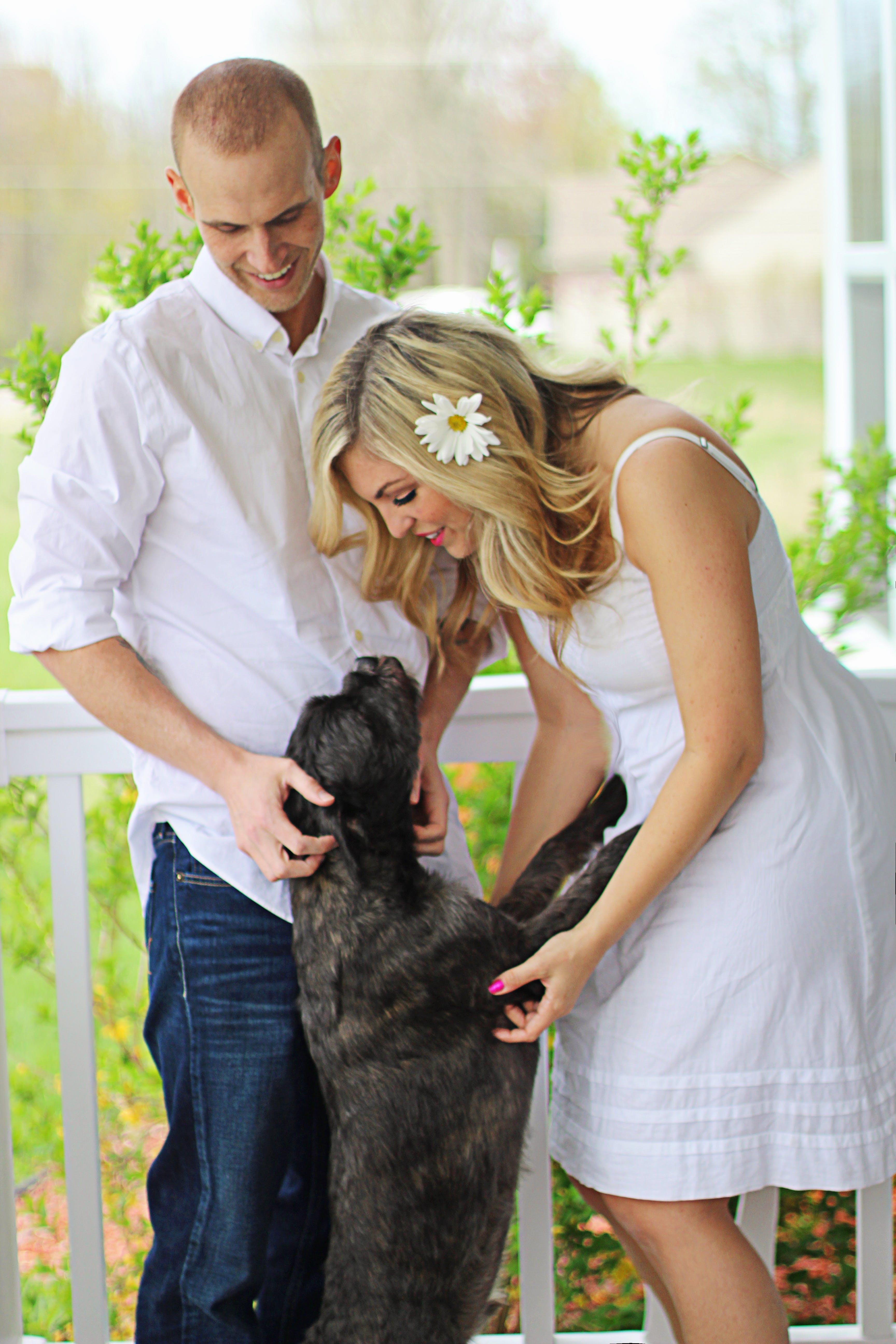 Free stock photo of love, people, summer, animal