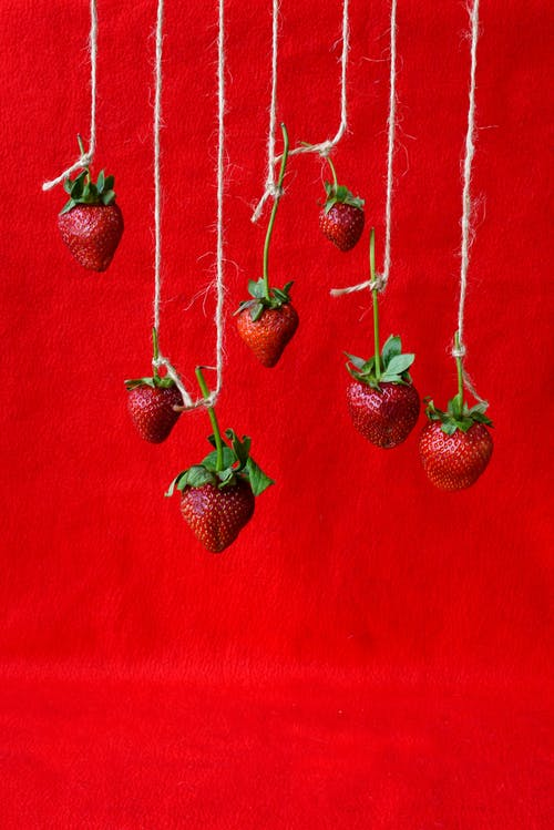 Red Strawberries Hanging on Strings