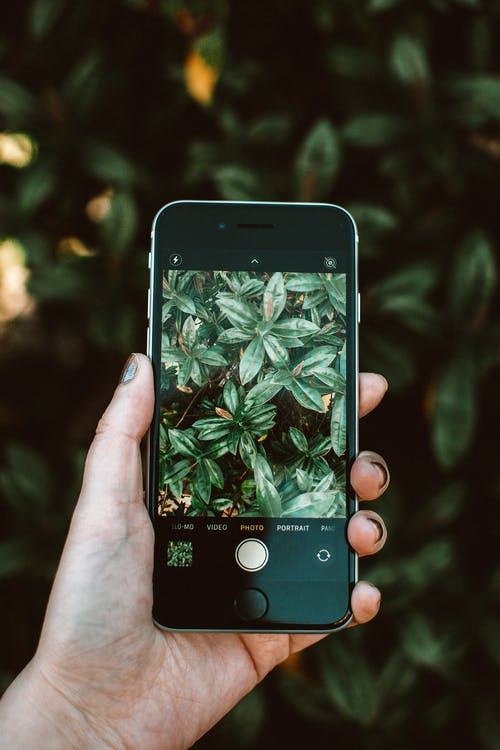 iPhone, 可攜式, 商業, 夏天 的 免費圖庫相片