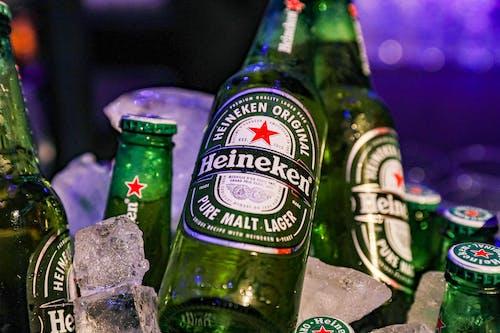 Bottles of cold beer in pub