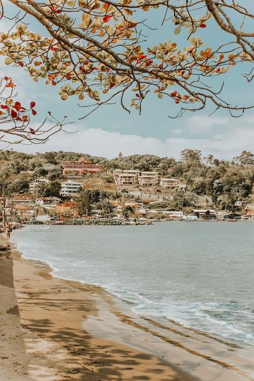 Small coastal settlement on sunny summer day
