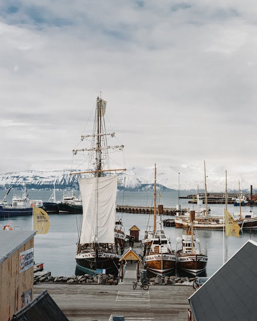 Sailboats moored in port against snowy mountains