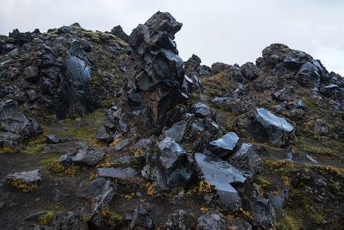 Black seashore rocks grown with northern moss