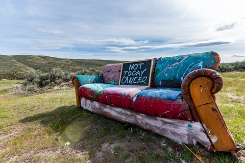 Painted old couch on ground in nature