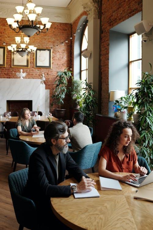 Fotos de stock gratuitas de adentro, cafetería, colaboración