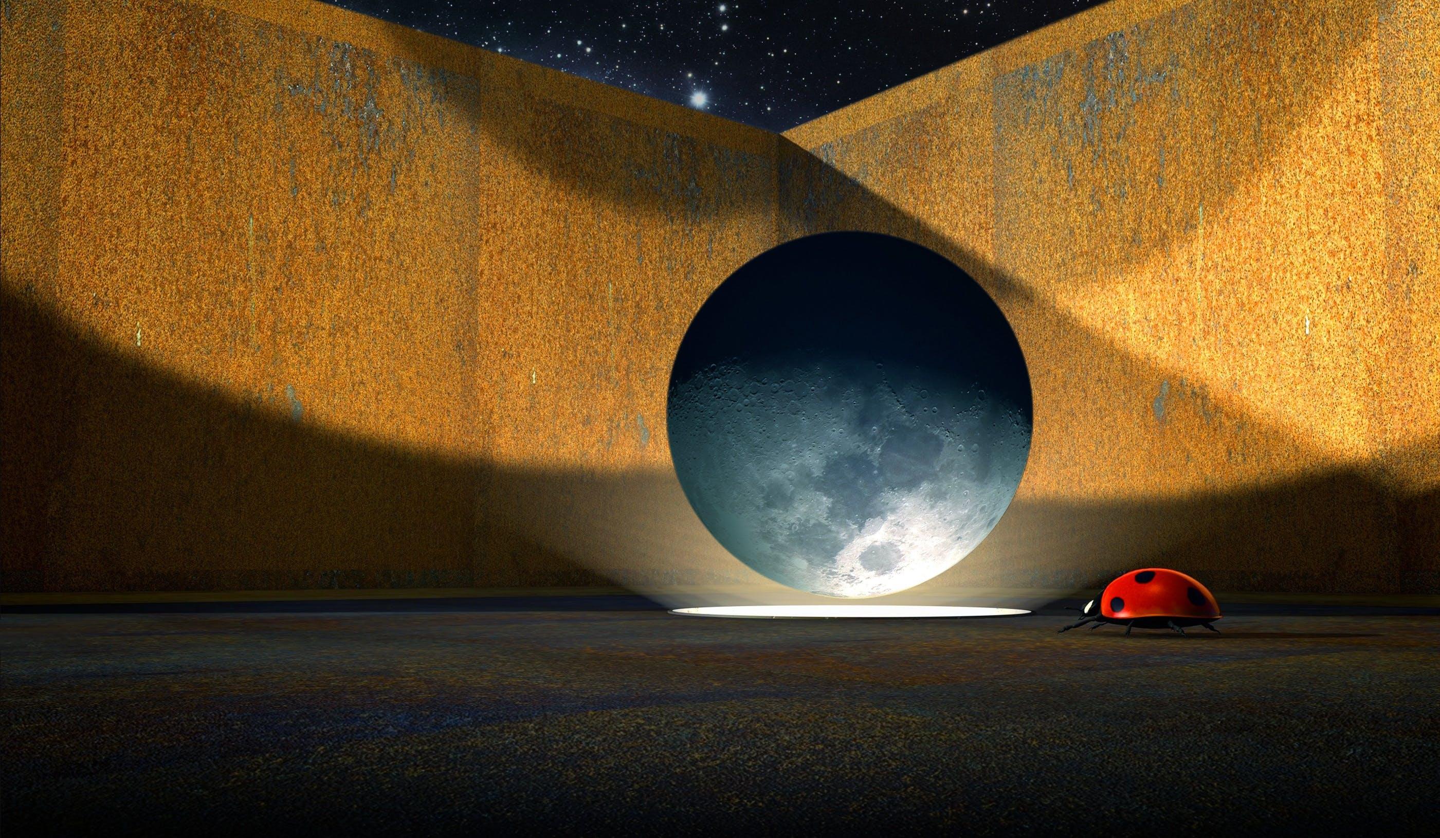 Free stock photo of light, sky, metal, moon