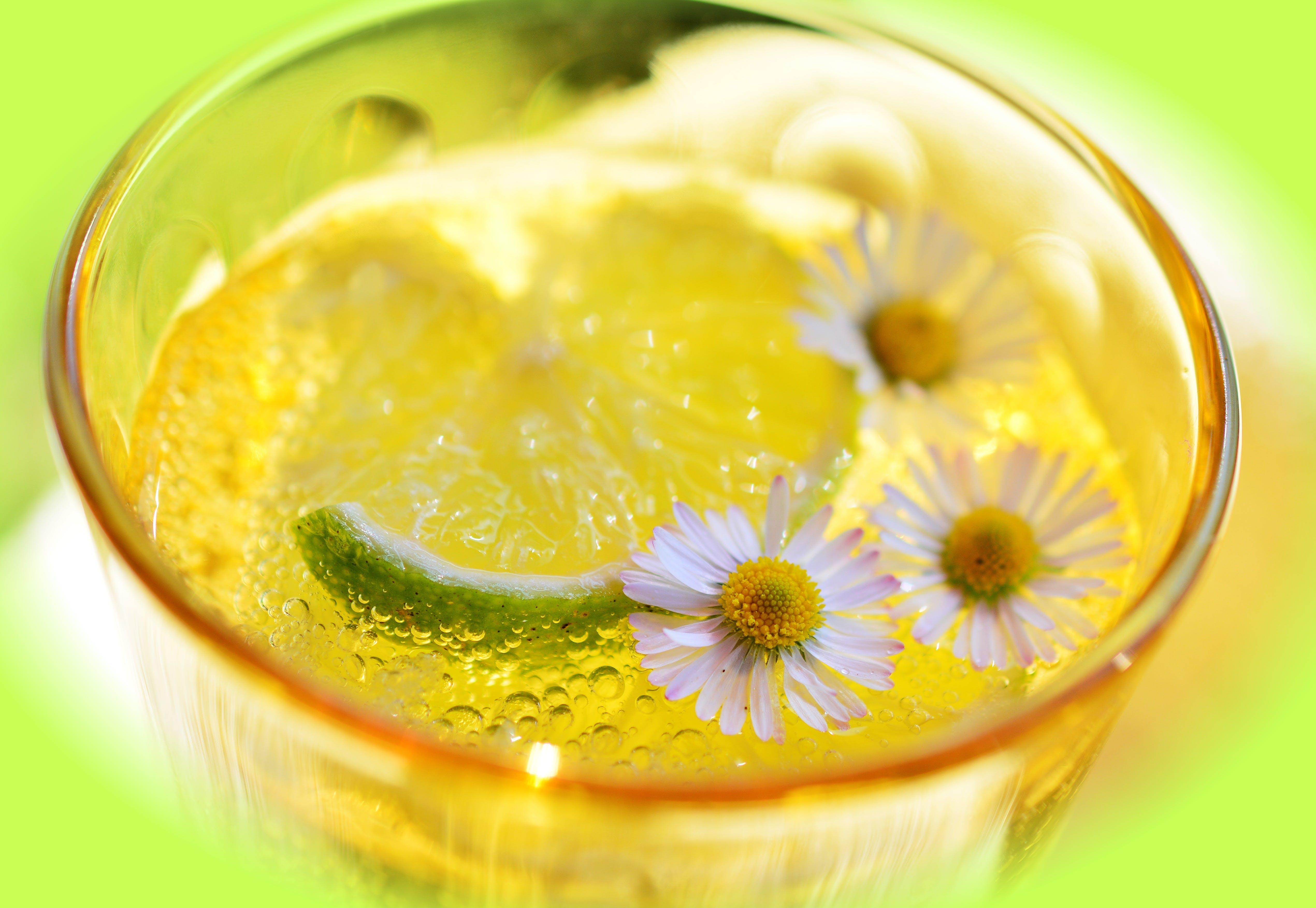 beverage, citrus, close -up