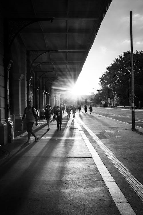 Foto d'estoc gratuïta de arquitectura, blanc i negre, carrer, carretera