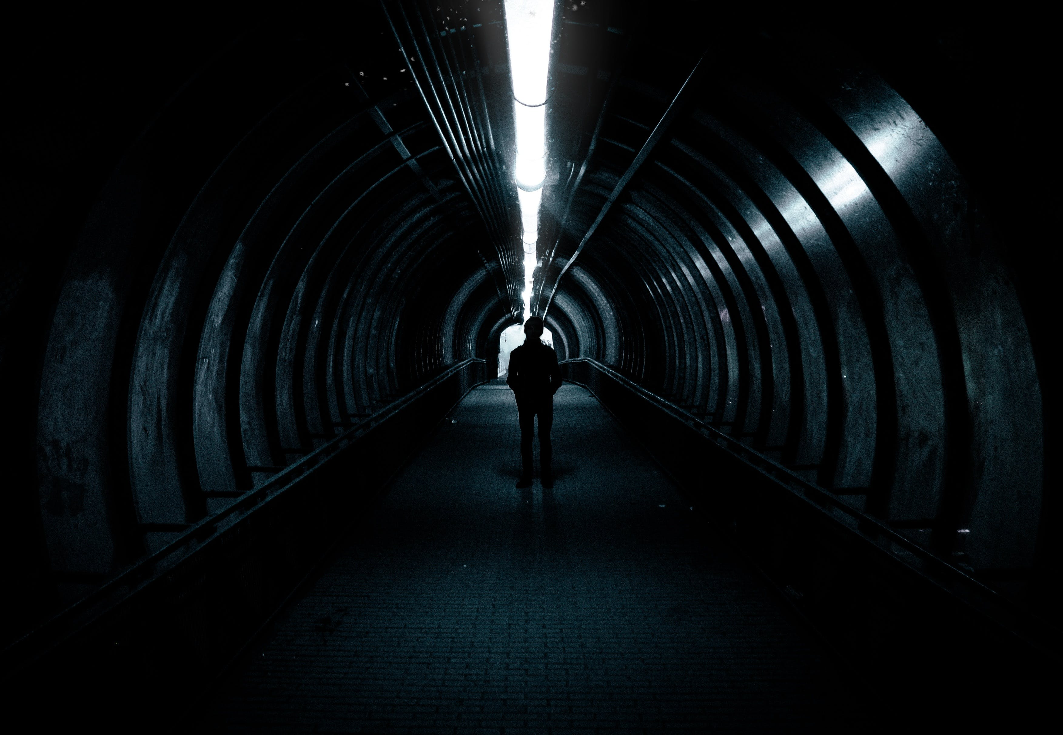 Free stock photo of light, man, person, dark