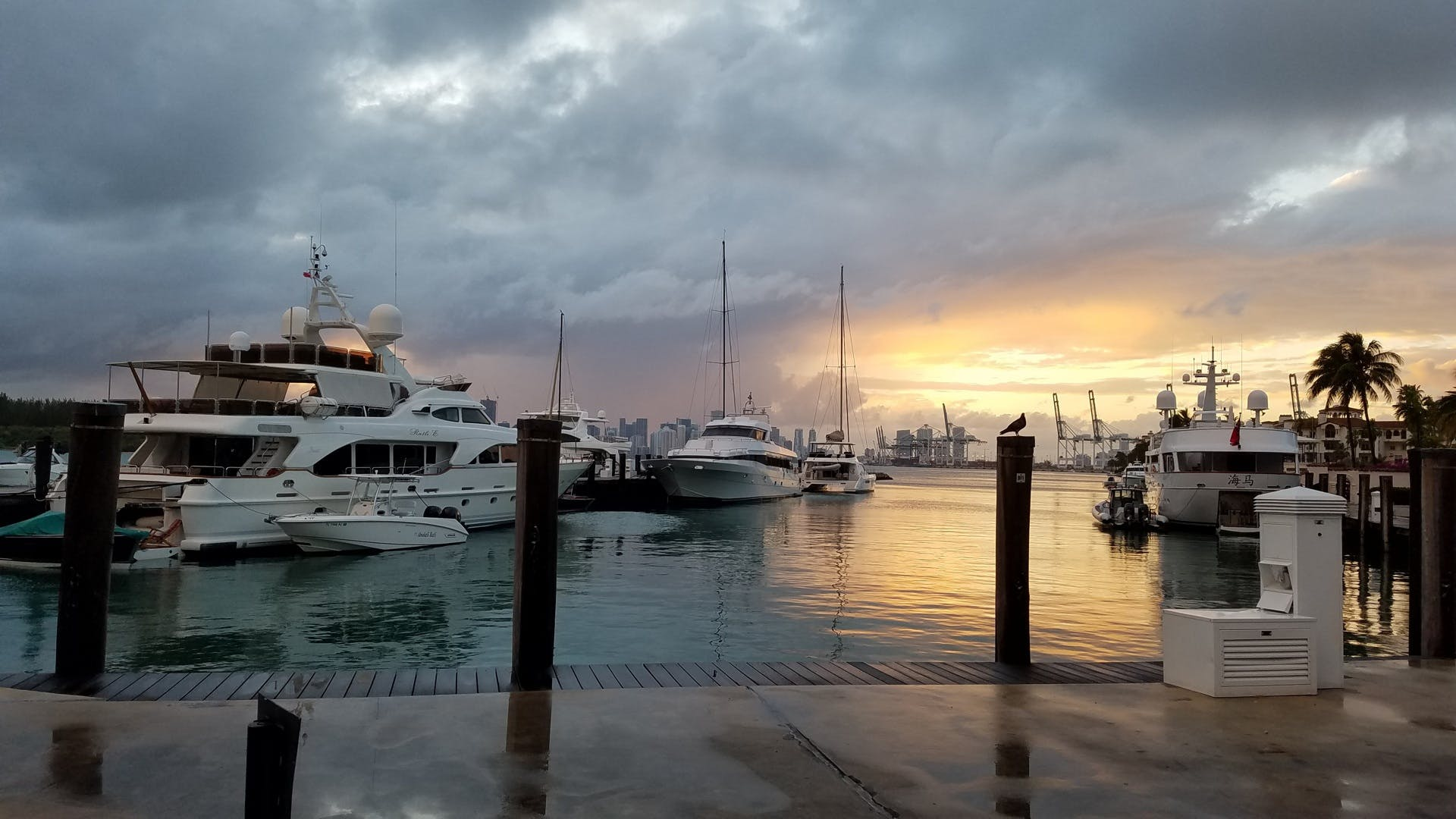 Free stock photo of sea, sunset, clouds, boats