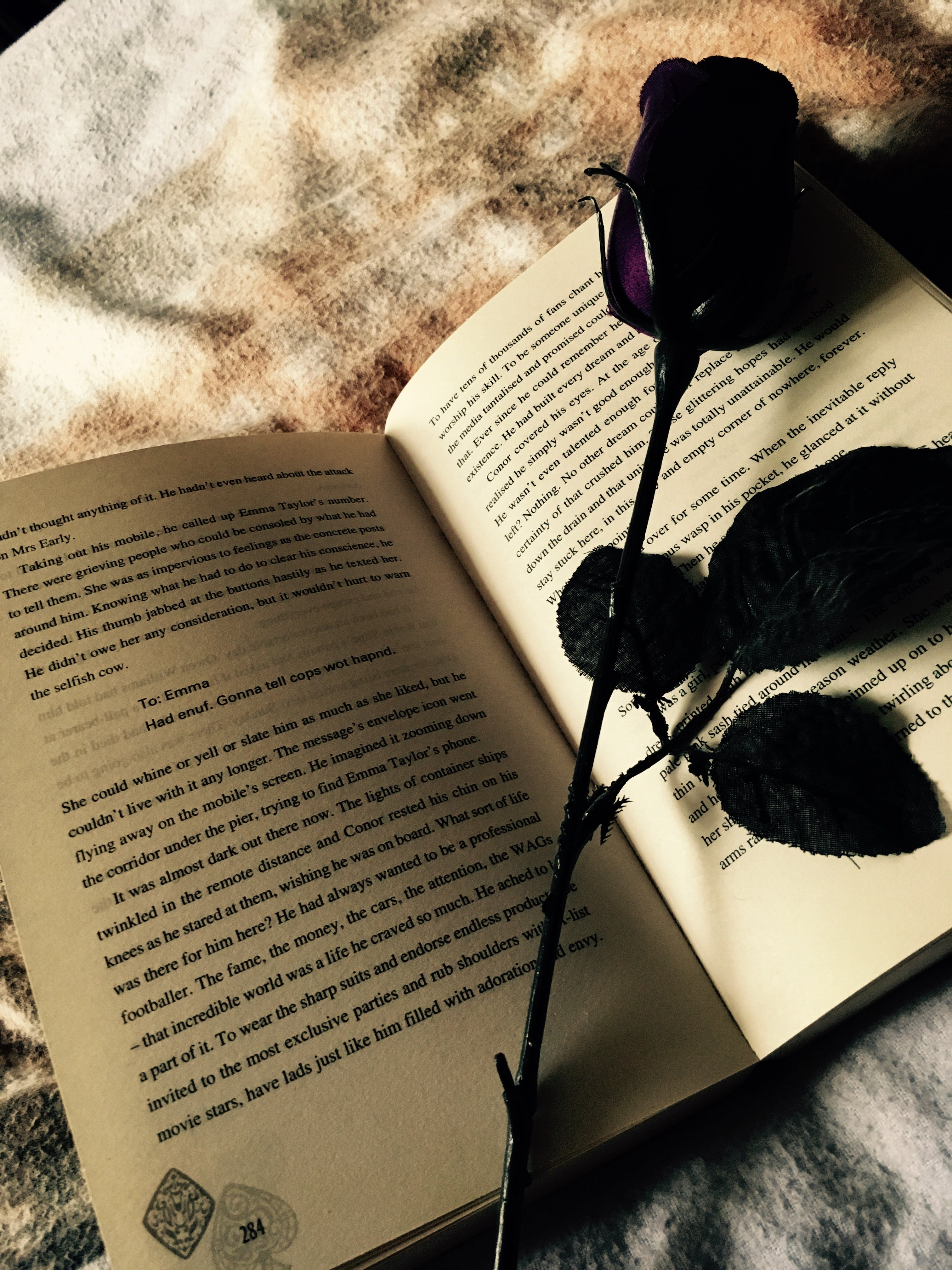 Free stock photo of books, rose, pages, dancing jax