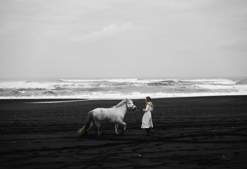 Unrecognizable woman walking with gray stallion on sea beach