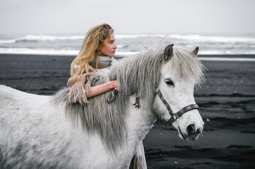 Woman caressing gray stallion on beach near ocean in daylight