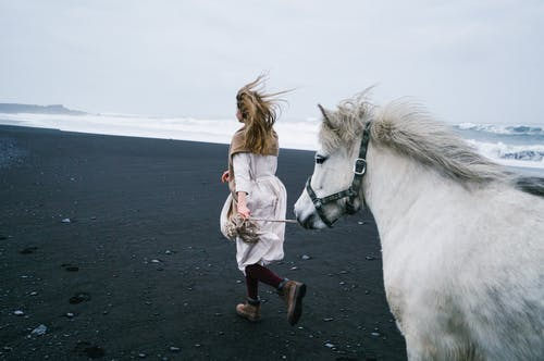 Unrecognizable woman leading horse on beach in windy day