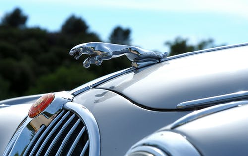 Close-up Photography of Jaguar Hood Ornament