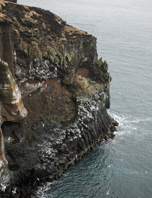 Magnificent rocky cliff and gulls near calm sea