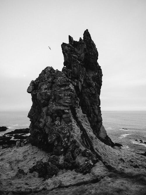 Dramatic rock formations and gull bird amid sea