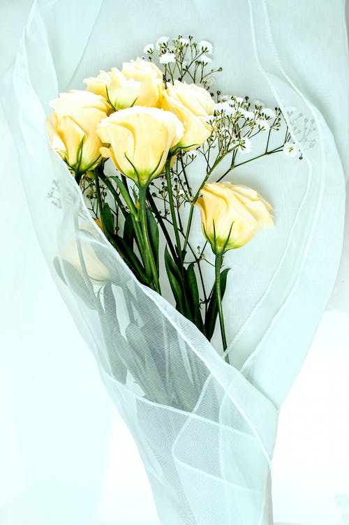 Overhead of beautiful yellow and white fragile flowers on light blue thin fabric in bright room in daylight
