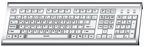 Free stock photo of computer keyboard, drawing, illustration
