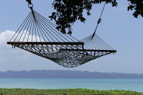 Kostenloses Stock Foto zu bäume, entspannung, erholung, ferien