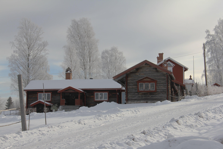 Brown Concrete House Near White Tree