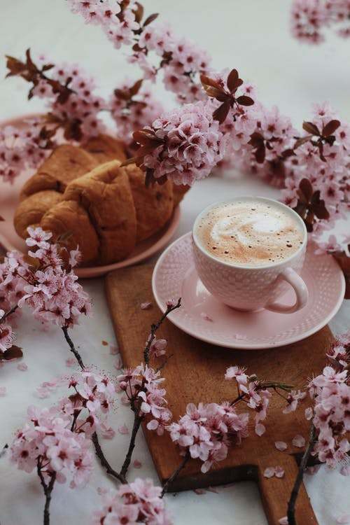 White cup of latte and plate of croissants among delicate light pink flowers on thin branches on table in daylight