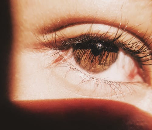 Brown eye of anonymous person