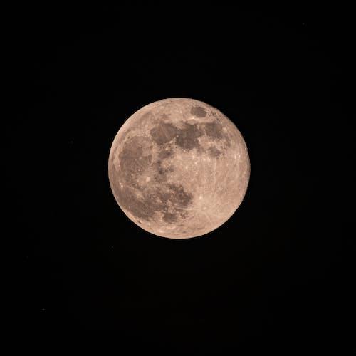 Immagine gratuita di angolo basso, armonia, astronomia