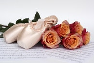 flowers, music, roses