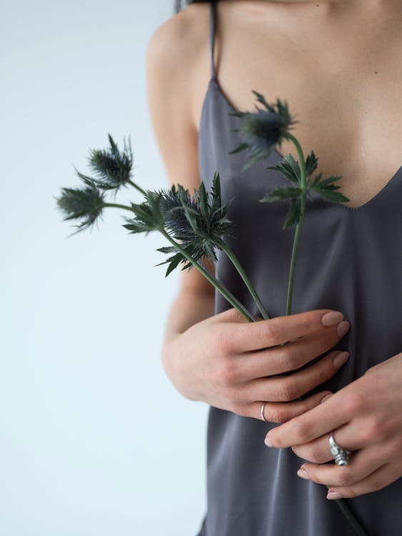 Crop unrecognizable young slim female in light top with fragile sprig of exotic sea holly flower