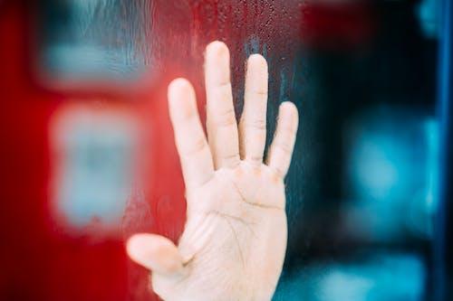 Fotos de stock gratuitas de cristal, dedos, efecto desenfocado