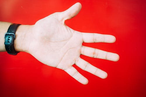 Photo of Person's Hand Against Red Background