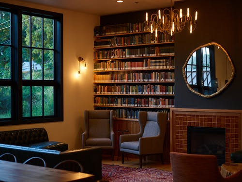 Cozy interior with bookshelves and fireplace