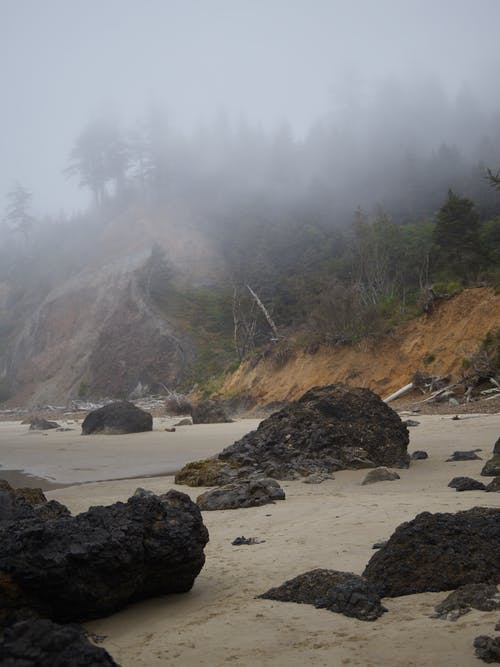Dramatic scenery of stony beach on foggy day