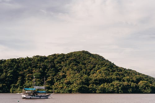 Boat floating near green trees on hill