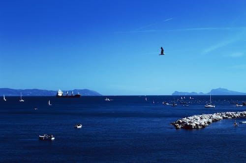 Бесплатное стоковое фото с голубой, горизонт, день, лодка