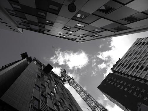 Ingyenes stockfotó ablakok, acélszerkezet, alacsony szögű fényképezés, belváros témában