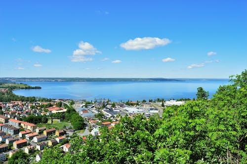 Бесплатное стоковое фото с вода, голубой, город, деревья