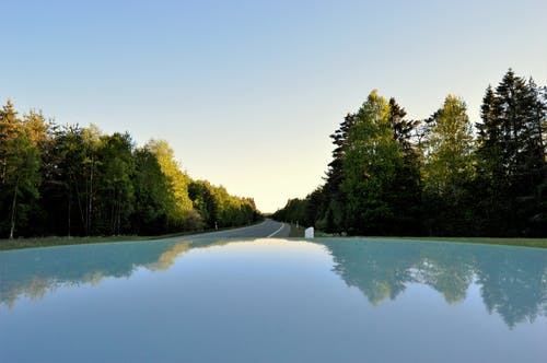 Free stock photo of car, evening, forest, mirror