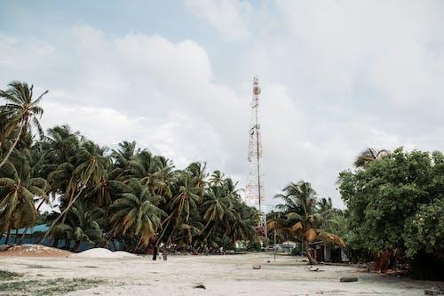 Fotos de stock gratuitas de antena de telefonía móvil, arboles, arena, campo
