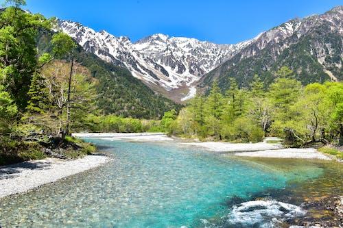Foto stok gratis air, air mengalir, alam