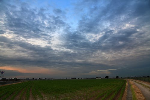 Free stock photo of clouds, country lane, countryside, field
