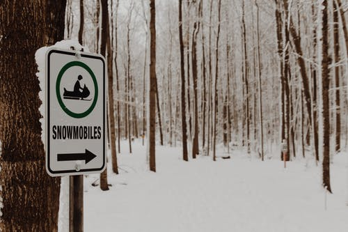 Free stock photo of arrow, forest, sign, snowmobile