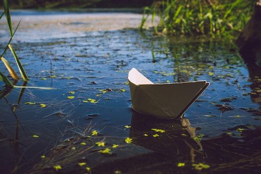 Kostenloses Stock Foto zu licht, natur, wasser, boot