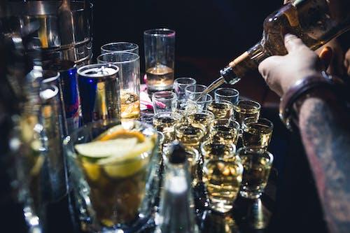Foto stok gratis bartender, dunia malam, lucu, mabuk