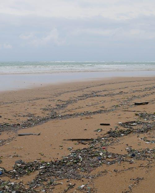 克萊納普, 塑膠, 污染 的 免費圖庫相片