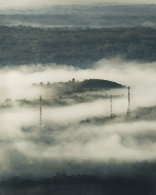 Základová fotografie zdarma na téma alam, berkabut, bidang hijau, pemandangan