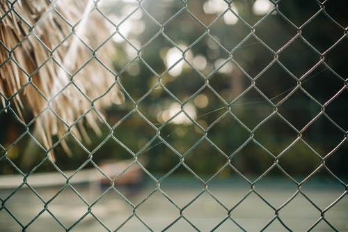 Photo of Chain-Link Fence